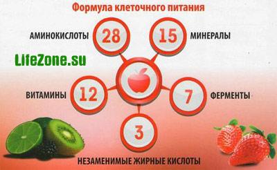 Клеточное питание: 28 аминокислот, 15 минералов, 12 витаминов, 7 групп ферментов, 3 незаменимые жирные кислоты