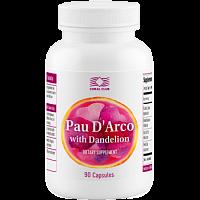 Pau D'Arco with Dandelion