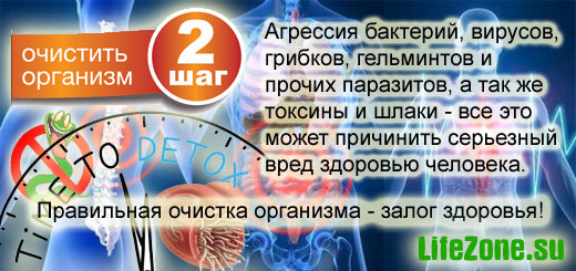 Путь к здоровью и долголетию. Шаг 2. Очистить организм