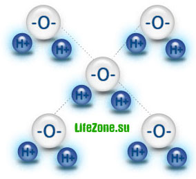 Молекула воды установила посредством четырех водородных мостов связи с четырьмя другими молекулами