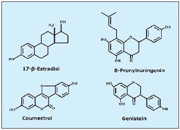 phytomix1