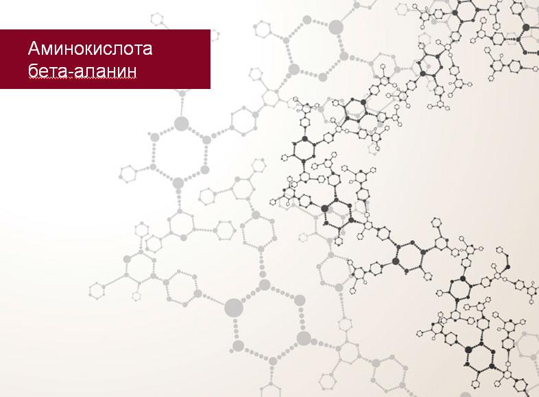 phytomix_beta_alanin