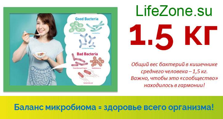 Баланс микробиома = здоровье всего организма