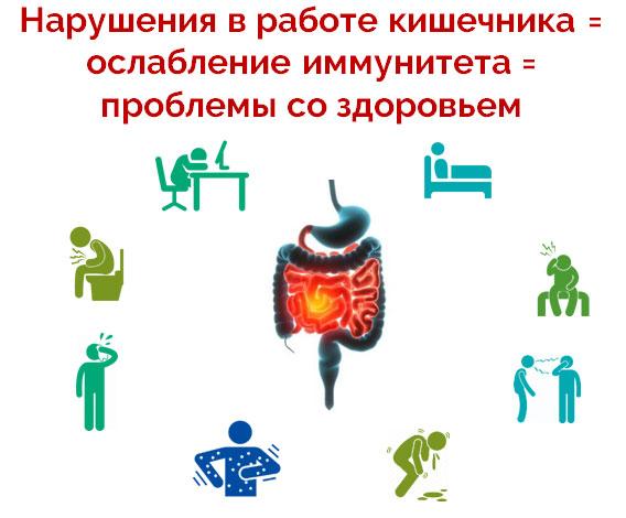 Нарушения в работе кишечника = ослабление иммунитета = проблемы со здоровьем