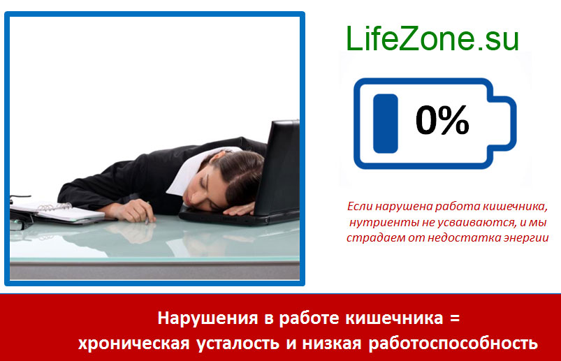 Нарушения в работе кишечника = хроническая усталость и низкая работоспособность