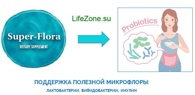 Продукты с пробиотиками и инулином повышают численность полезных бифидо- и лактобактерий