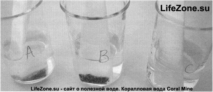 Экспериментальная установка. Стаканы, наполненные стандартной пробной водой и чайными пакетиками, содержащими: 1 г Coral-Mine (А), обычного кальциевого песка (В), и пустыми (С, пустой чайный пакетик для контрольной воды)